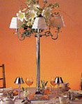 Candelabra/Tall Centerpiece  Collection